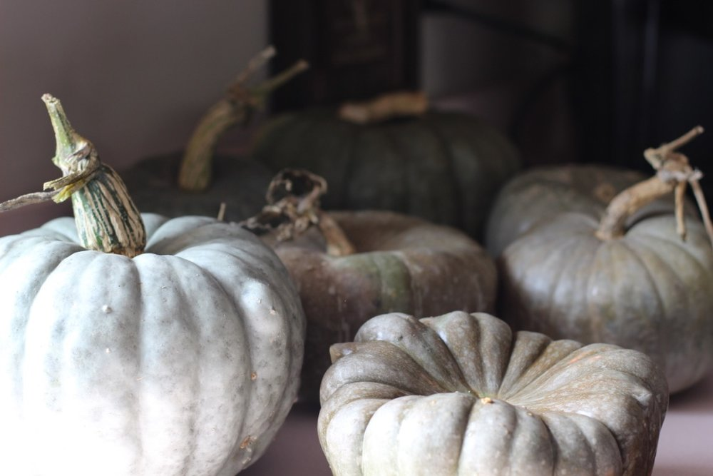 Fall Mix Green Pumpkin | Floral Arrangement in a Pumpkin | Loveshyla.com