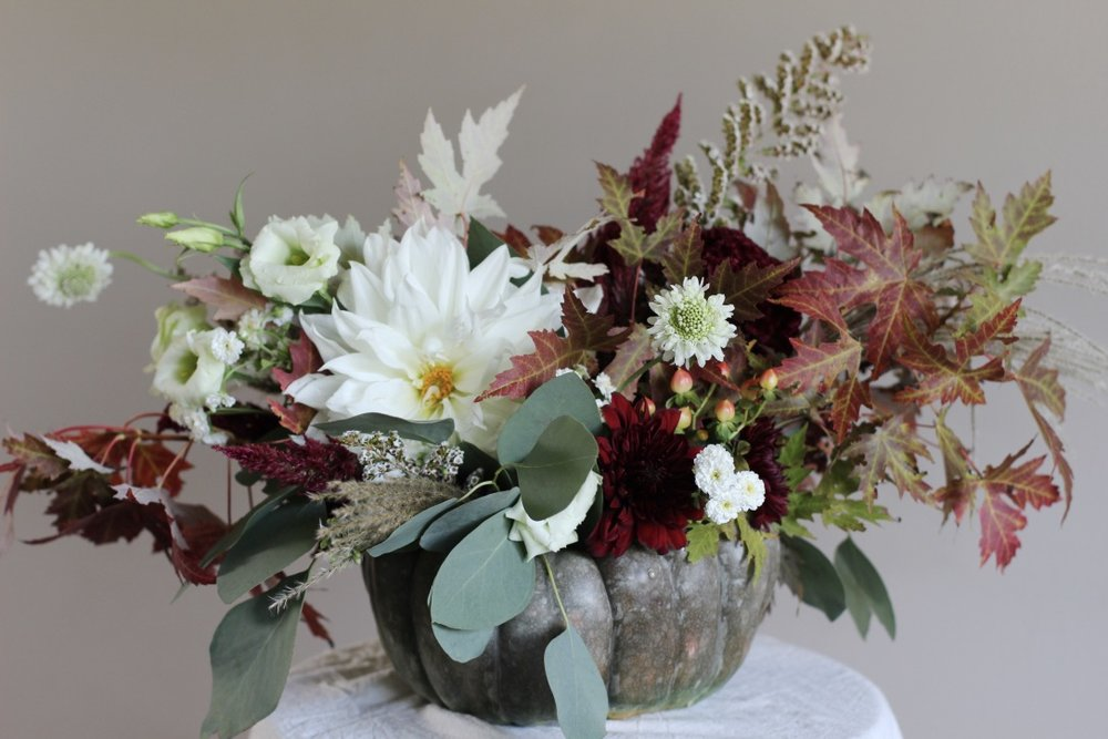 Dusty Green Pumpkin Arrangement | White, burgundy, green, dinner plate dahlia, fall foliage | loveshyla.com