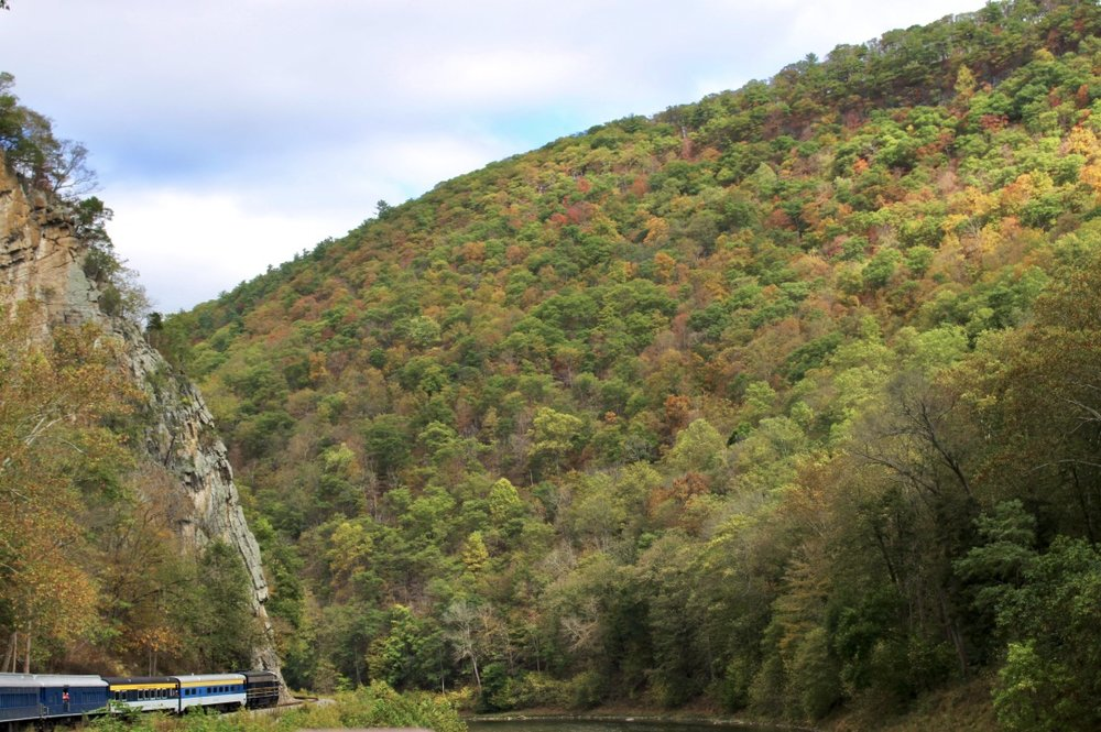 Fall Train Ride Along the Potomac River, Romney, West Virginia | Wild & Wonderful West Virginia Tour Guide | Love Shyla