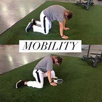 GolfMobility.jpg
