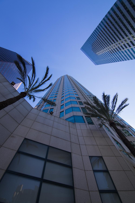 LA Skyline-6.jpg