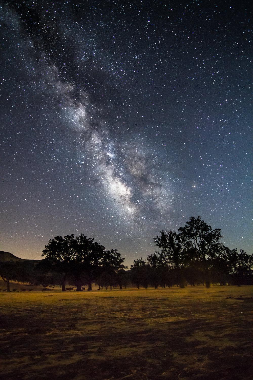 DW_AstroPhoto018.jpg
