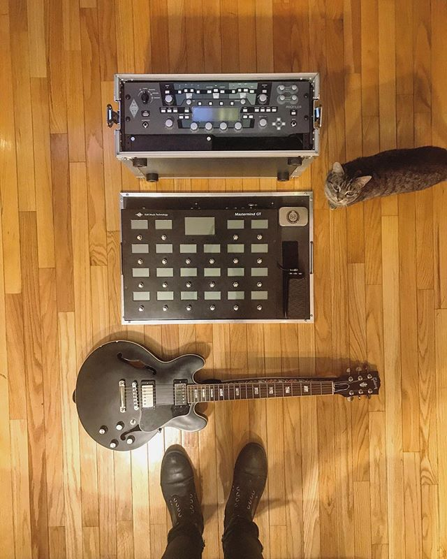 Personal gear update: The @rjmmusictechnology GT22 has made the kemper everything I want it to be. Also that's me. I am a cat. . . . . . #pedalboard #bootsandboards #catsofinstagram #catsonamps #geartalk #geartopia #kemper #gibson #ihavethisthingwithfloors