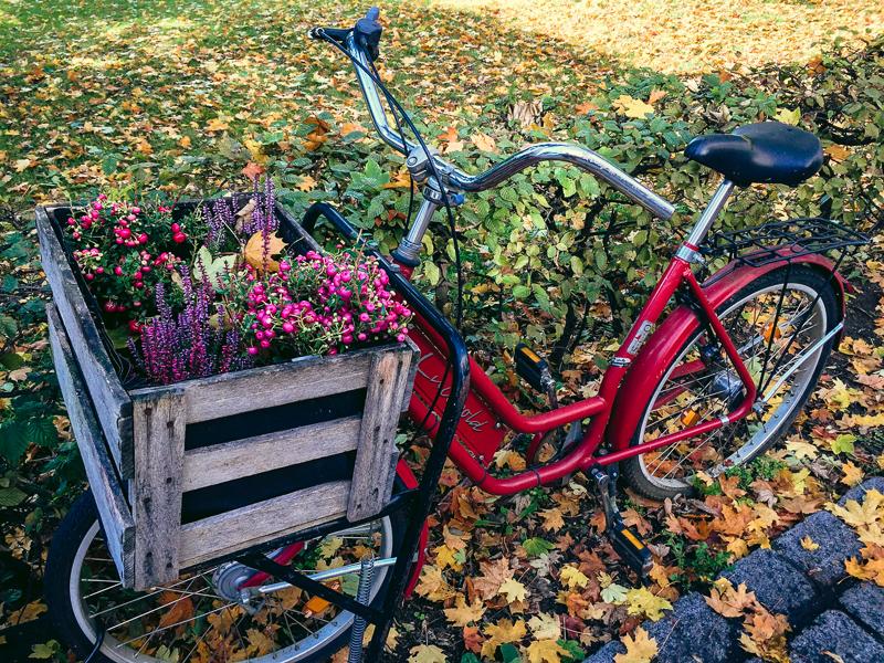 Bamberg Bike