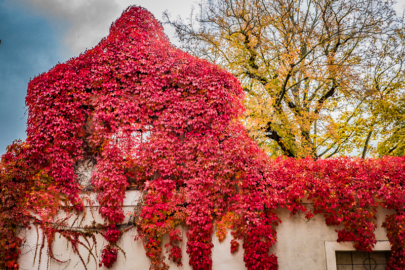 posts_regensburg_16.10.25-120.jpg
