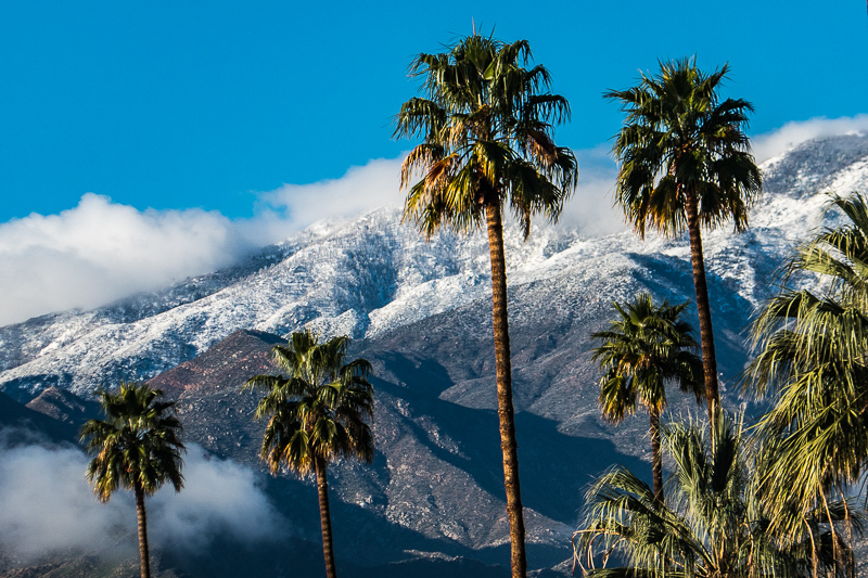 posts_or_coast_170228_USA_palmsprings_CA_019.jpg