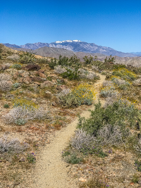 Bear Creek Oasis Trail