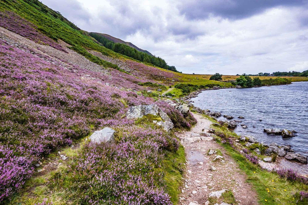 Ennerdale Water Hike