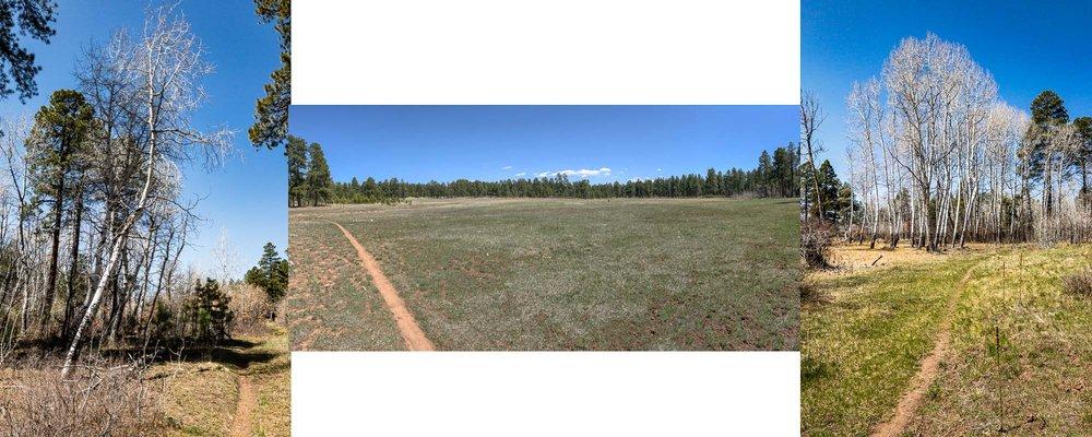 Pagosa Trails