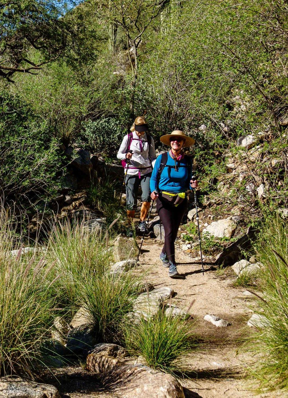 Pima Canyon Hike