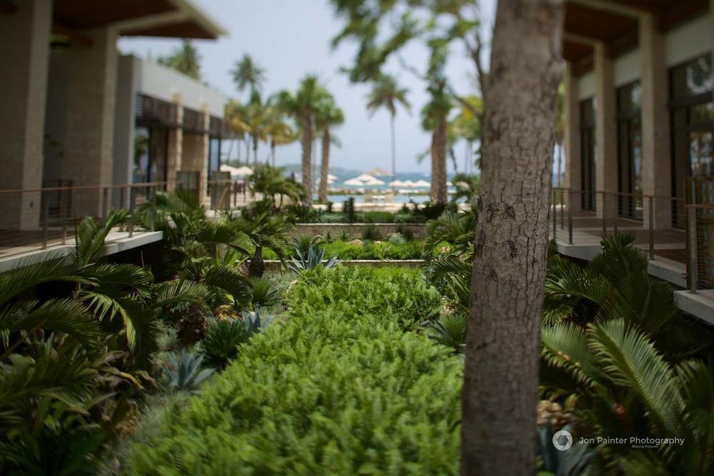 Dorado Beach, a Ritz Carlton Reserve, Puerto Rico