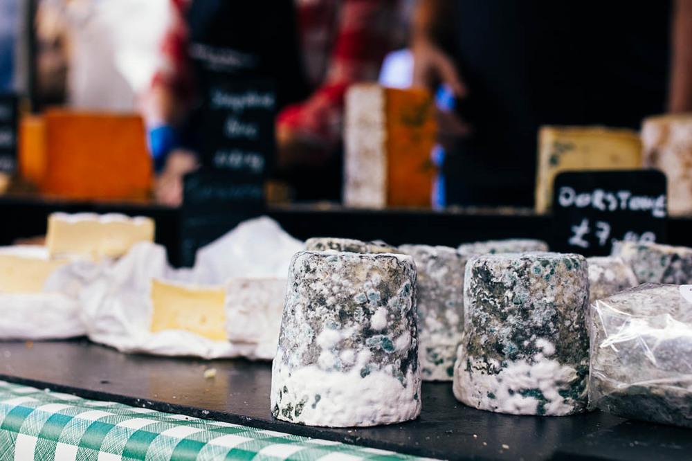 moldy-cheeses.jpg