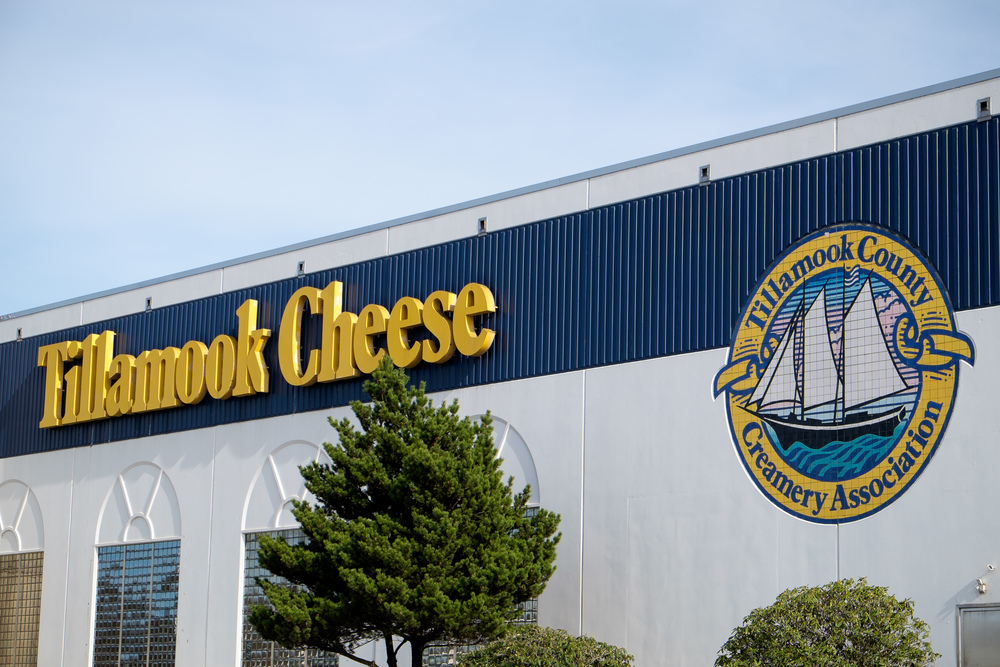 Took a tour of the Tillamook factory. I've never seen so much cheese in my life.
