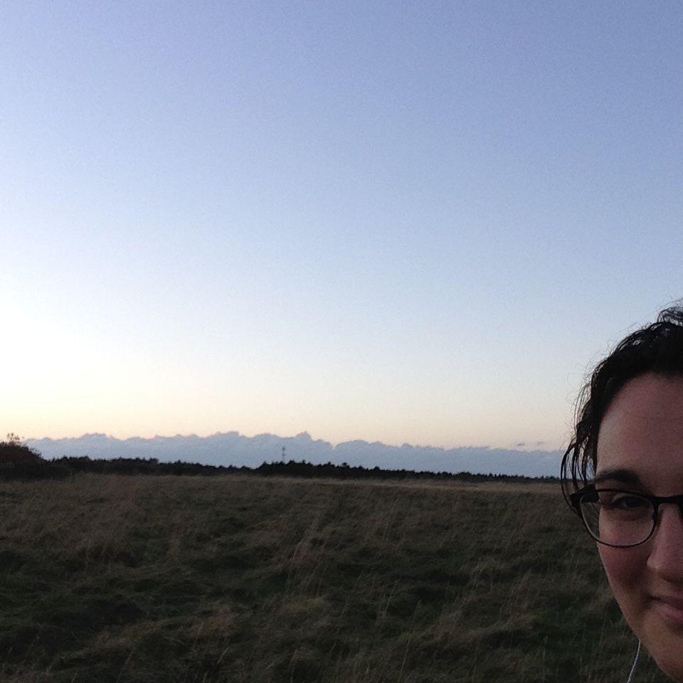 From a mid-week walk, a cloud selfie in the field near my house.