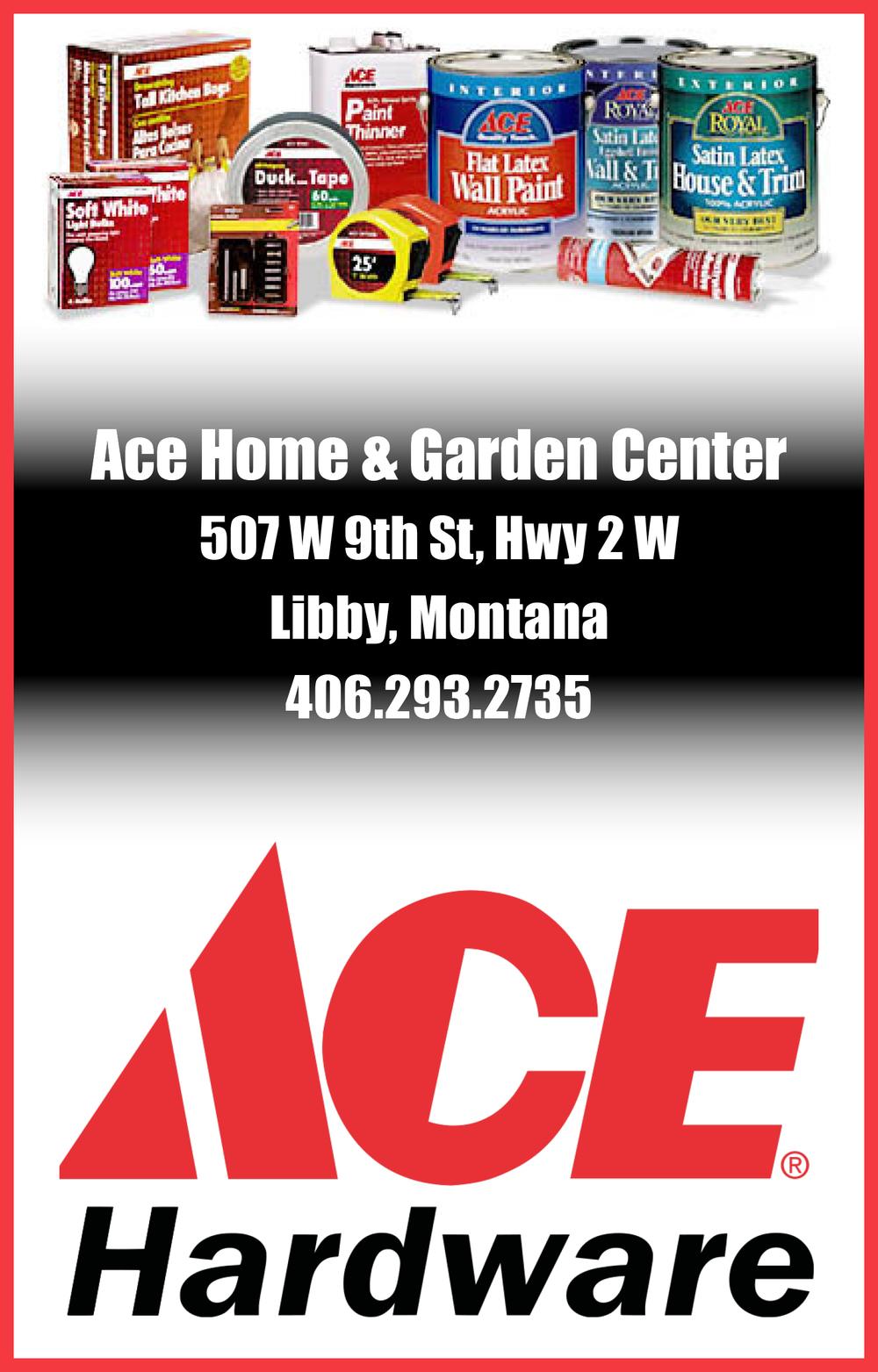 Ace_AD.jpg
