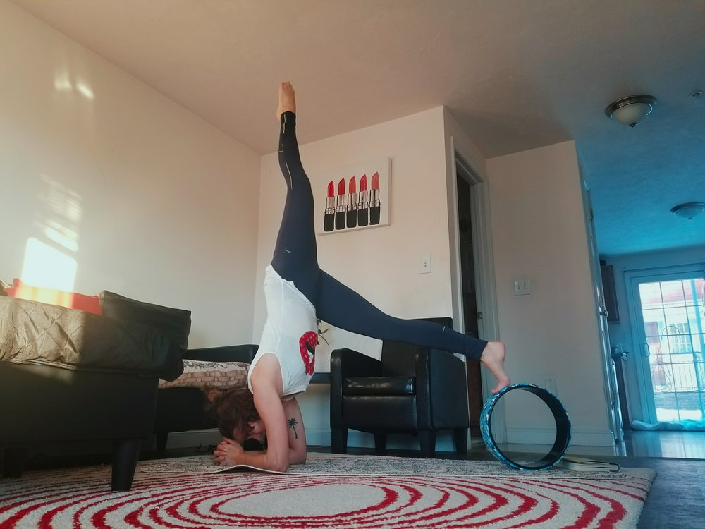 A fashion blogger works on a forearm stand using a yoga wheel.