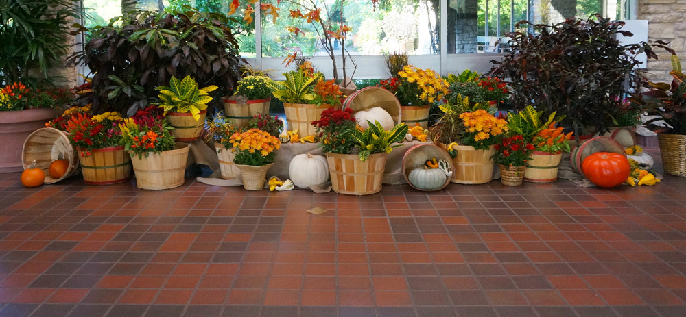 Fall display in the Garden Center