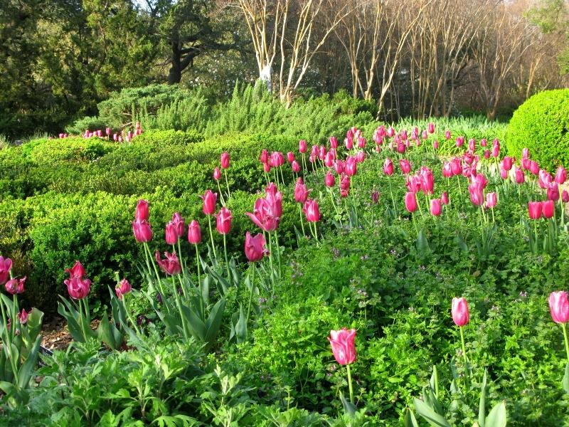 0. Four Seasons Garden