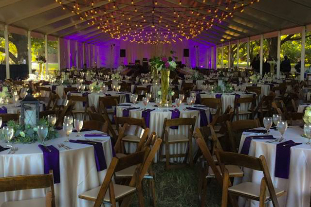 Tented Grove Reception