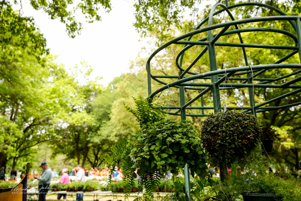 Calendar of Events — Fort Worth Botanic Garden