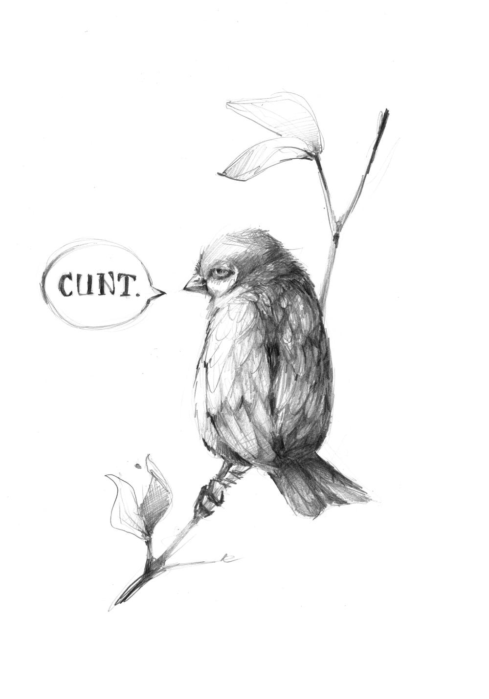 BIRD_CUNT.jpg