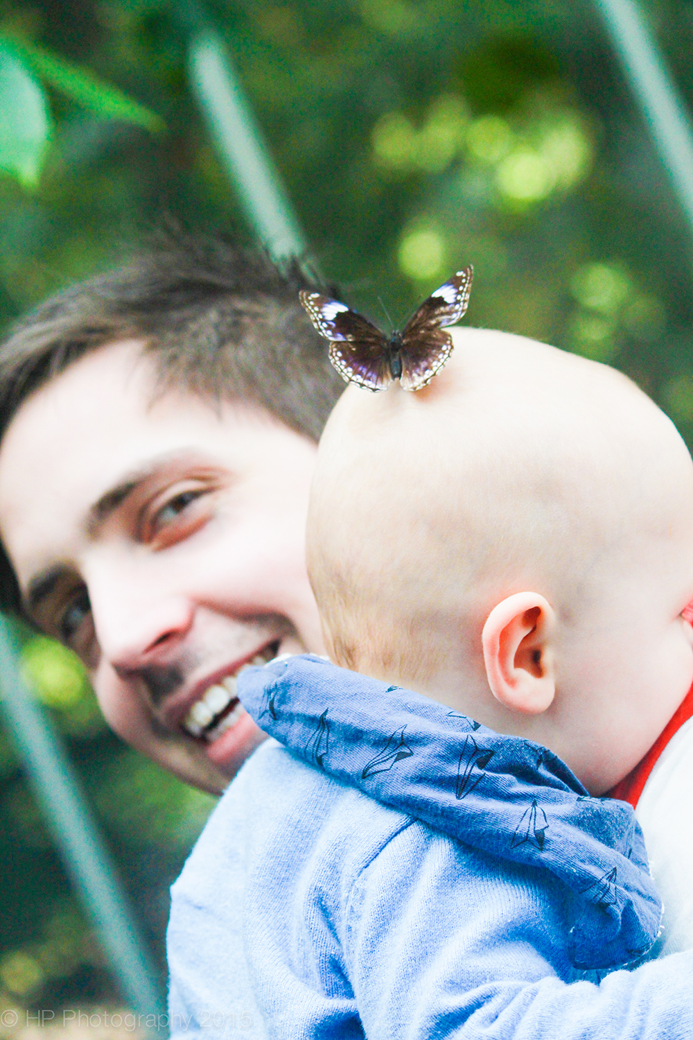 Caleb and his Dad get a visit from a Butterfly.