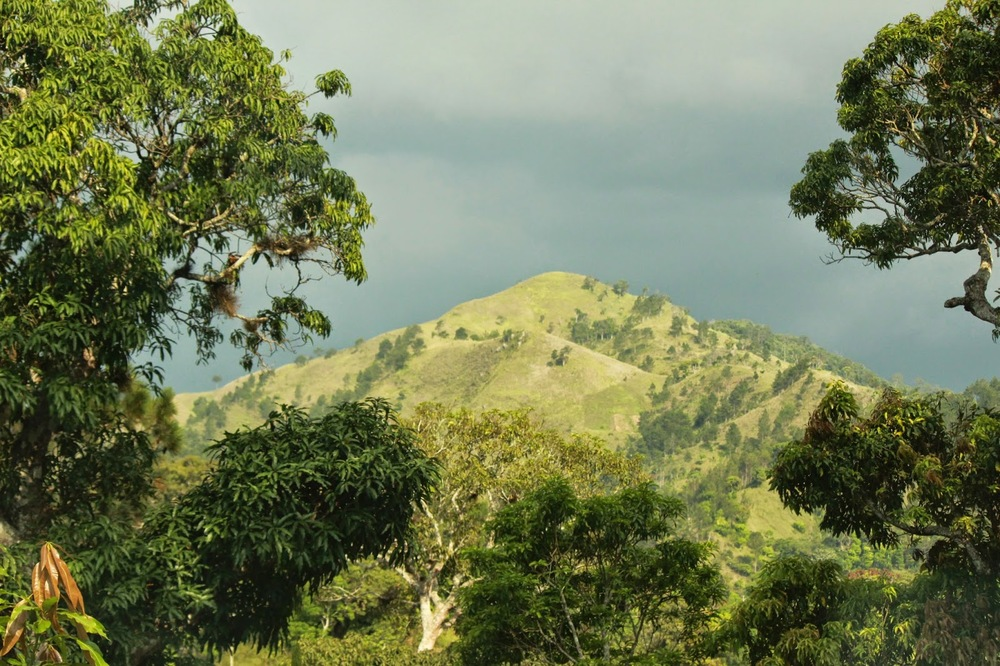 View of landscape in Haiti's northeastern department. (Photo credit: Ted Oswald
