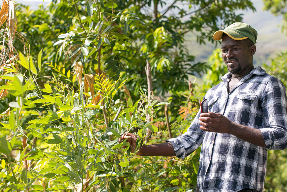 Ilerne Joseph shows off his garden in the community of Wondo, Verrettes Commune. MCC's community-based approach to building food security in communities like Wondo has brought the community closer together.