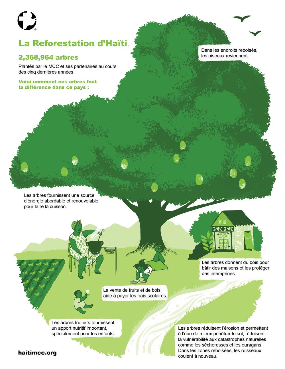 reforestation haiti FRANCAIS web.jpg