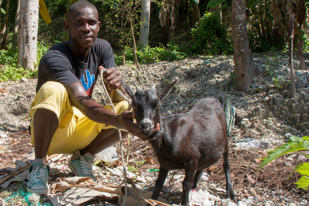 Eliscar Joseph Osmel received a female goat after he completed goat husbandry training that is part of an MCC-supported project to help families recover losses after Hurricane Matthew struck St-Jean-du-Sud, and other parts of southern Haiti, in late September 2016. The devastation caused by the hurricane meant that many families saw their livelihoods destroyed.