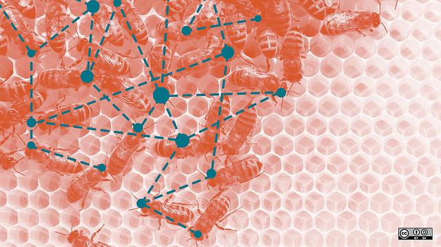 Copy of Image source: opensource.com