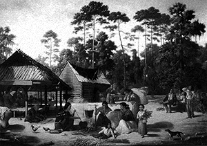 Illustration of a Choctaw Village