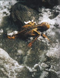 Image of discovery of Otzi.