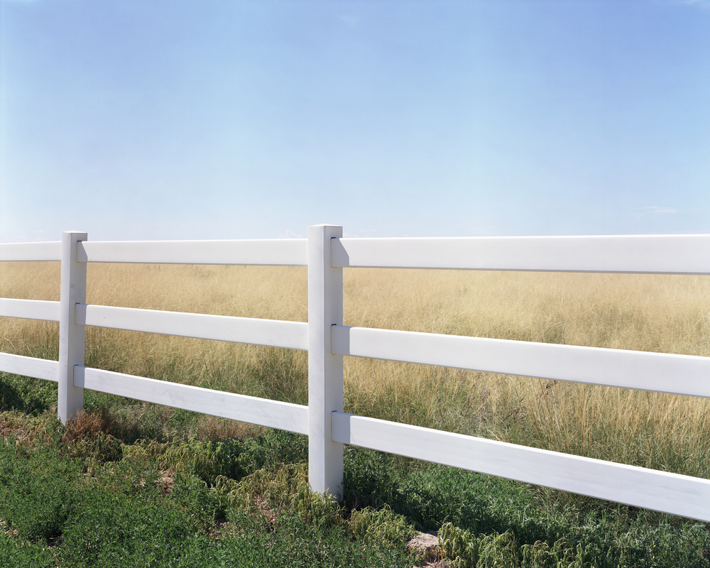 flat fence roswell book.jpg