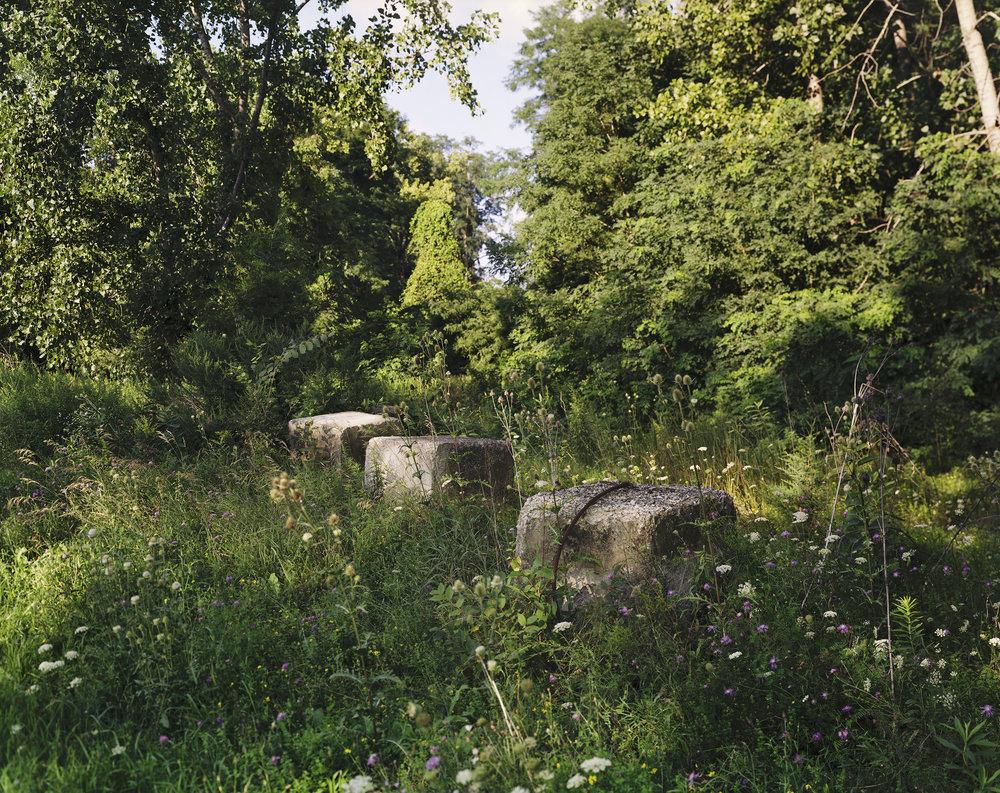 Forest Blocks copy.jpg