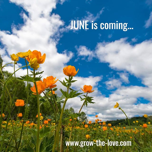 If you are in the Northern hemisphere - June looks like this!  #growthelove #connection101 #relationships #love