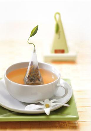 Copy of Tea Forte