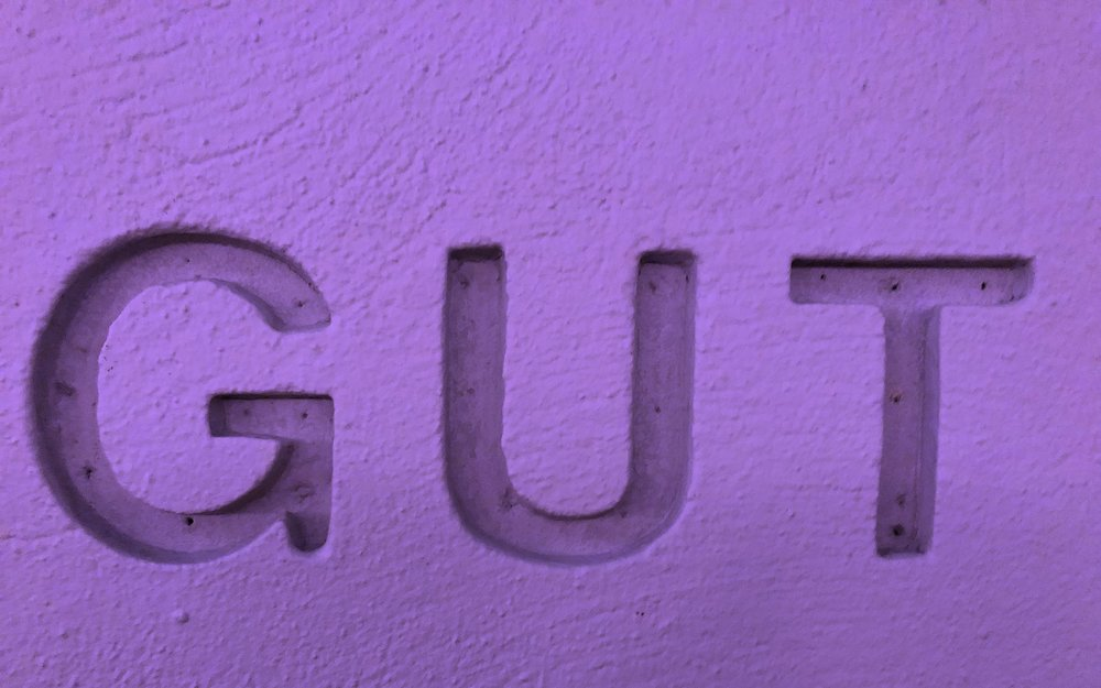 GUT Wall image.JPG