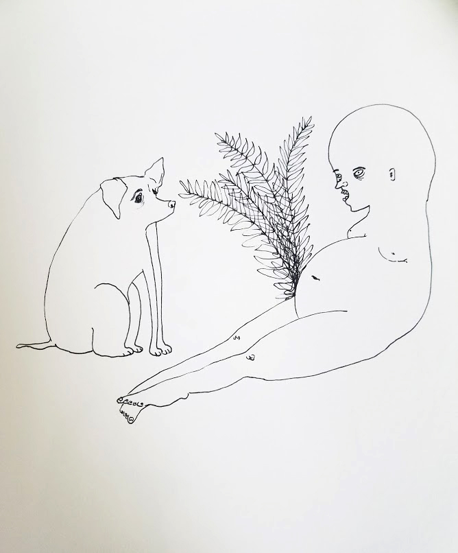 Plant and Pet