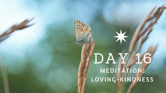 Day 16 Loving Kindness