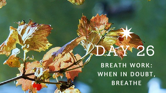 Day 26 When in Doubt Breathe