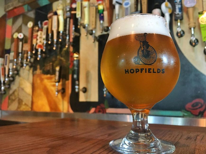 hopfieldssnifter.jpg