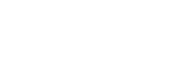 The Bearded Mechanic