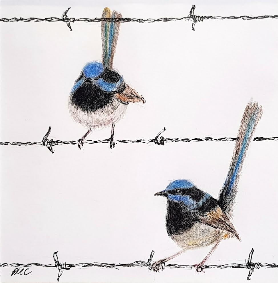 'On the Wire' Trish Crisfield -