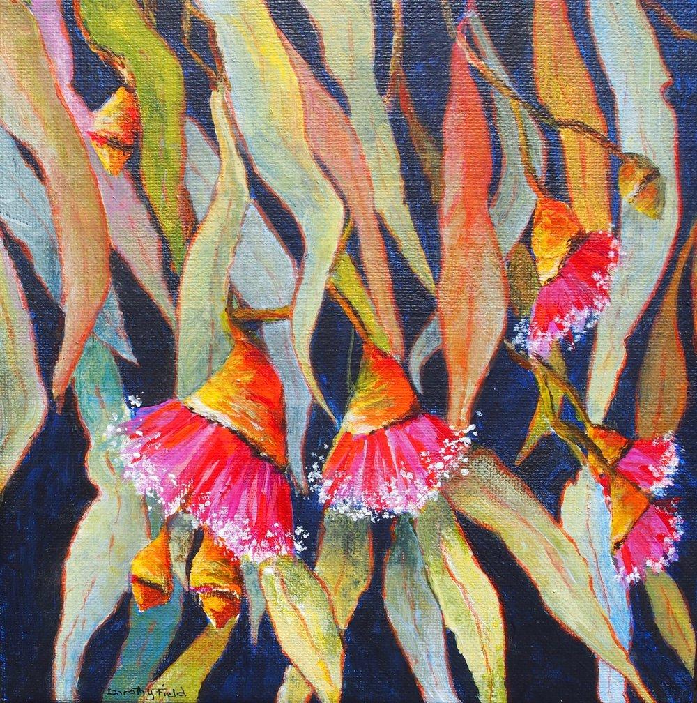 Dorothy Field Gumnuts Acrylic on canvas 20x20 $100.jpg