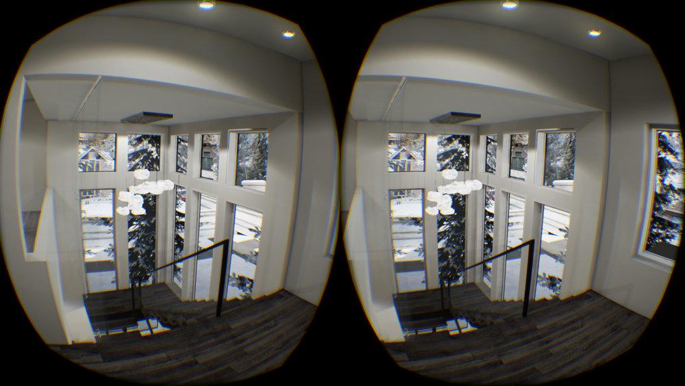 VR_Hopkins2.jpg