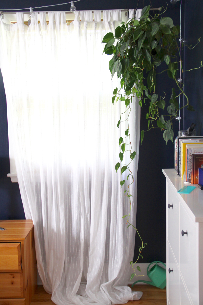 Blue Bedroom with White Curtain, Twinkle Lights, and Hanging Plant