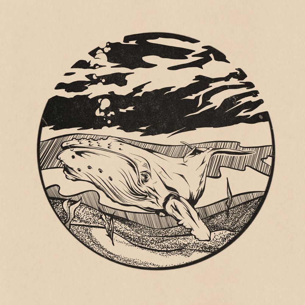Inktober---Day-12---Whale.jpg