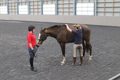 Photo: Alexandra Beckstett, The Horse Managing Editor