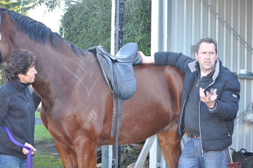 Saddle Fitting